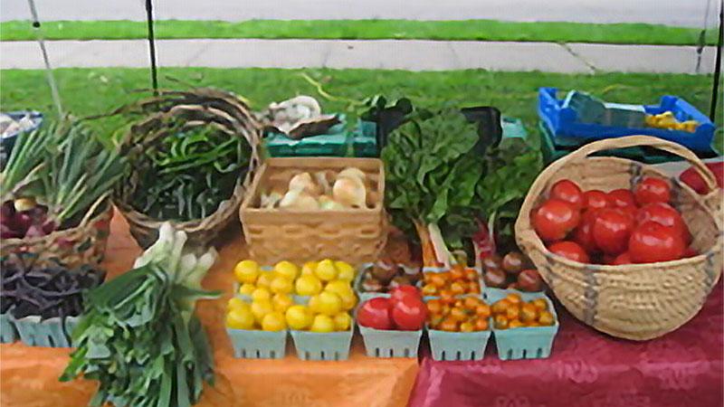 Photo - Living Acres Farm