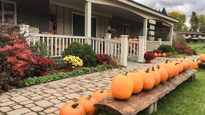 Photo - Quest Farm Produce