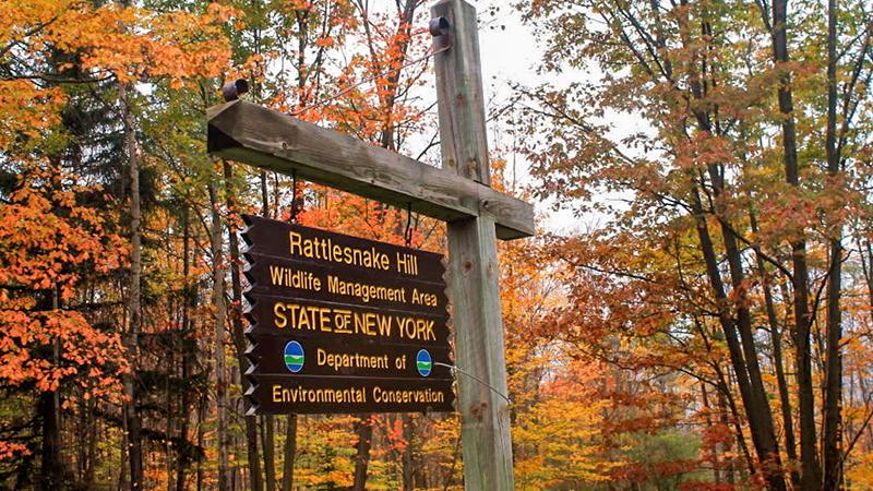 Photo - Rattlesnake Hill Wildlife Management